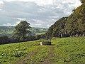 Transmitter near Myddelton Lodge - geograph.org.uk - 60797.jpg