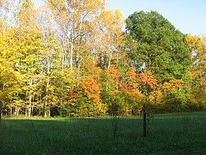 Pleasant Run Township, Lawrence County, Indiana - Scenery in the township