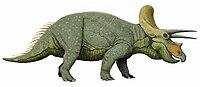 Triceratops liveDB.jpg