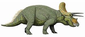 Lebendrekonstruktion von Triceratops
