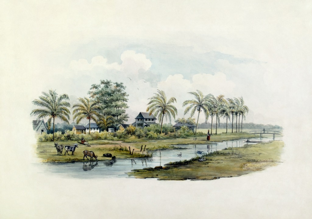 Paysage d'une colonie tropicale dans le musée des Tropiques à Amsterdam