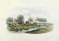 Tropenmuseum Royal Tropical Institute Objectnumber 1138-7 Riviergezicht met gebouwen van een kato2.tif