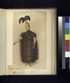Turkey, 1815-20 (part 1) (NYPL b14896507-416390).tiff