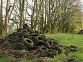 Tyre pile, Pepperdon Down - geograph.org.uk - 1290975.jpg