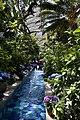 U.S. Botanic Garden Conservatory (23363497144).jpg