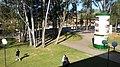 UPF - panoramio (2).jpg