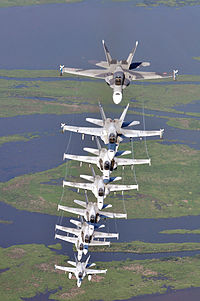 US Navy 090711-N-9712C-007 ight F-A-18 Hornets assigned the River Rattlers, Strike Fighter Squadron (VFA) 204, fly in a column formation over southern Louisiana's wetlands during a photo exercise