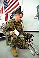 US Navy 101118-F-5586B-144 Marine Sgt. Brian Jarrell pets his dog.jpg