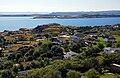 Upper Island Cove.jpg