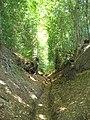 V-Shaped Valley, Bramshott - geograph.org.uk - 1298232.jpg