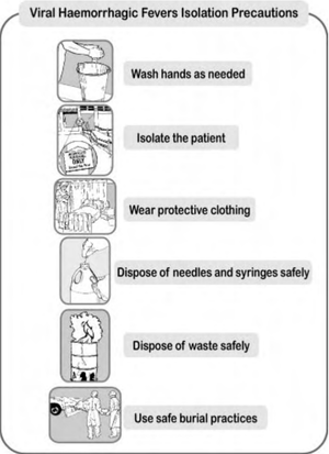 VHF isolation precautions poster