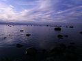 Vaade merele, Türisalu, Harjumaa.JPG