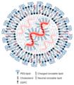 Vaccines-09-00065-g001.webp