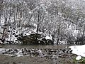 Valjevske planine - zapadna Srbija - reka Gradac - mesto Ćelije - ispod manastira Čelije - Erozivna brana 4.jpg
