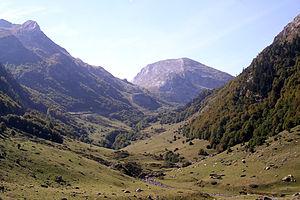 Vallee d'Ossau.JPG