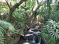Vanille nature park Mauritius 2019-09-30 11.jpg