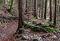 Velden am Wörther See Köstenberg Wanderweg zur Burgruine Hohenwart 08112018 5290.jpg