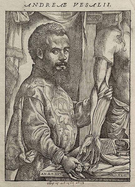 Bestand:Vesalius Fabrica portrait.jpg
