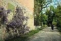 Via degli Dei, Pianoro, nei pressi di via delle Orchidee 01.jpg