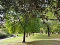 Victoria Park 20170930 153222 (49767537193).jpg