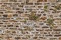 Vieux Pont in Belcastel 12.jpg