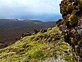 Vue du Mont Branca - panoramio.jpg