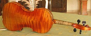 Bookmatching - Bookmatched maple violin back