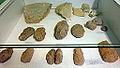 Vuursteenwerktuigen2, archeologische collectie Museum Land van Valkenburg, Limburg.JPG