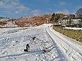 Waen-y-fedwen track - geograph.org.uk - 1654881.jpg
