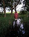 Walking on water - geograph.org.uk - 100008.jpg