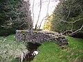 Wall Arch - geograph.org.uk - 163738.jpg