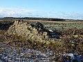 Waterhouse Farm ruins, Kennox Moss, East Ayrshire - view west from Gallowayford road.jpg