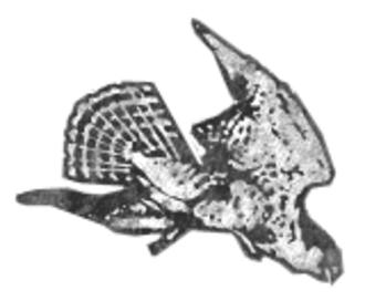 Waterloo Hawks - Image: Waterloo hawks logo
