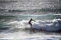 Web Summit 2017 - Surf Summit SM1 1755 (24313258498).jpg