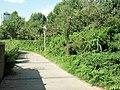 Weicheng, Weifang, Shandong, China - panoramio (119).jpg
