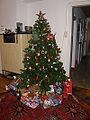 Weihnachtsbaum 2009 01 (RaBoe).jpg