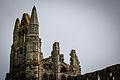 Whitby Abbey (13430224713).jpg