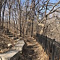 Winchell Trail in Minneapolis early spring 2020.jpg
