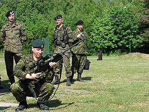 Andrew Leslie (general) - Image: Wizyta kanadyjskiego gen. broni Andrew B. LESLIE w 16 Dywizji Zmech (3)