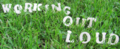 Working Out Loud als Buchstaben im Gras.png