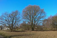 Wuppertal Metzmachersrath 2015 049.jpg