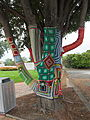 Yarn-Bombed-Tree-Ulverstone-20160307-005.jpg