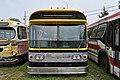 Yellow trim (9115041343).jpg