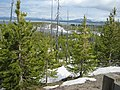 Yellowstone Lake, Wy, USA - panoramio.jpg