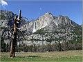 Yosemite Falls - panoramio (5).jpg