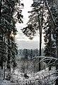 Zavolzhsky District, Ivanovo Oblast, Russia - panoramio - Andris Malygin (12).jpg