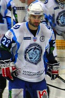 Zbyněk Irgl Czech ice hockey player