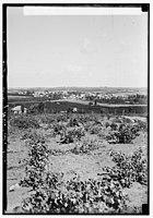 Zionist colonies on Sharon. Ramat Gan. North of Tel-Aviv LOC matpc.00201.jpg