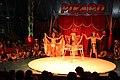 Zirkus-Picard 5864.JPG