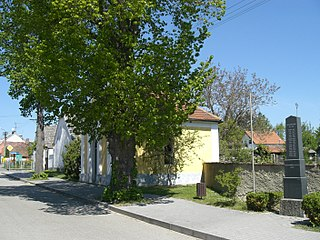 village in Písek District of South Bohemian region